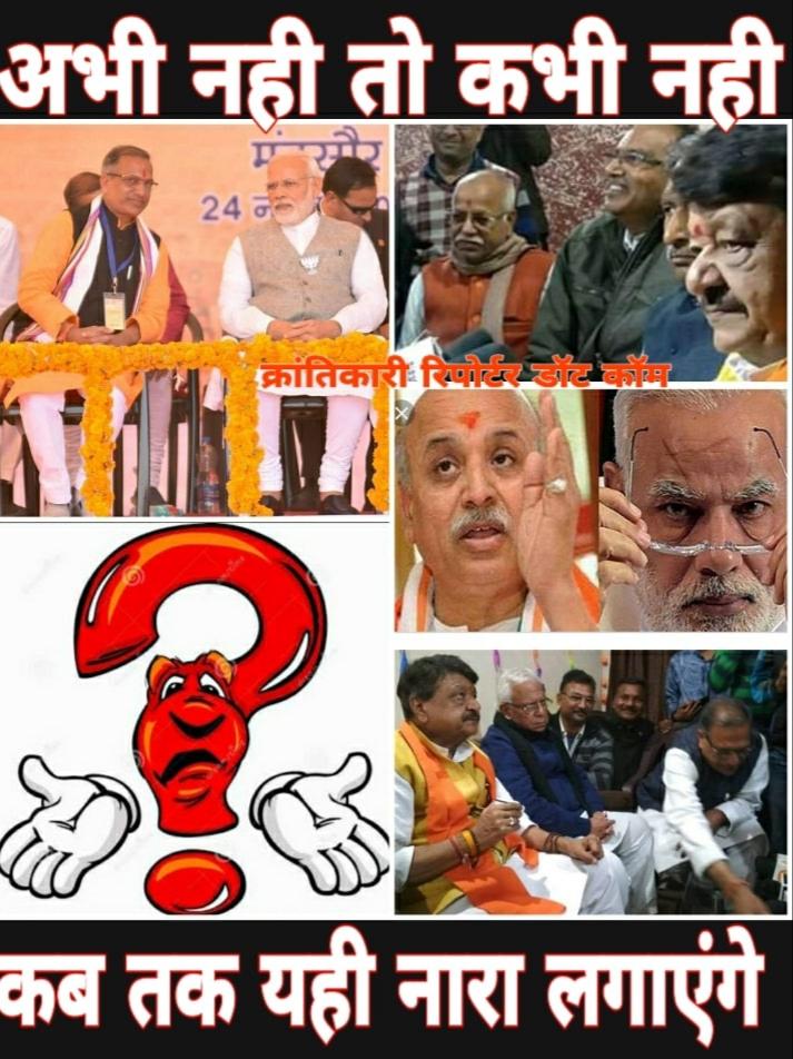 #भाजपा ने टिकिट नही दिया, तो है #प्रवीण तोगड़िया...?