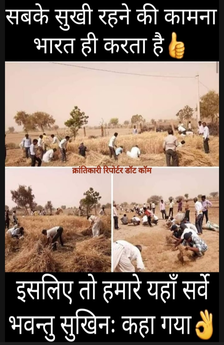 #जोधपुर में एक किसान के जवान बेटे की मौत हो गई... तो इस दुःख शामिल होने गए #लोगों ने 10 बीघा खेत में खड़ी फसल काट कर किसान की मद्दत की...!